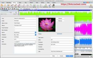 MixPad 5.33 Crack